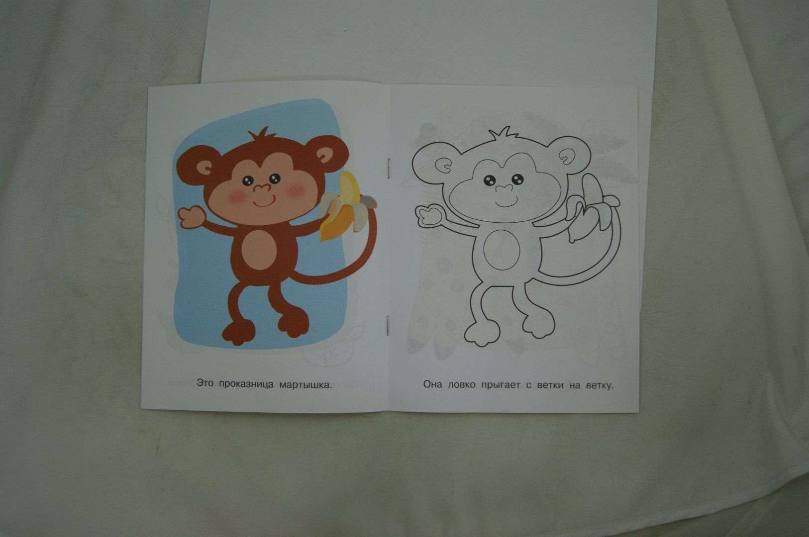 Иллюстрация 1 из 28 для Животные жарких стран. Проказница мартышка | Лабиринт - книги. Источник: Лабиринт