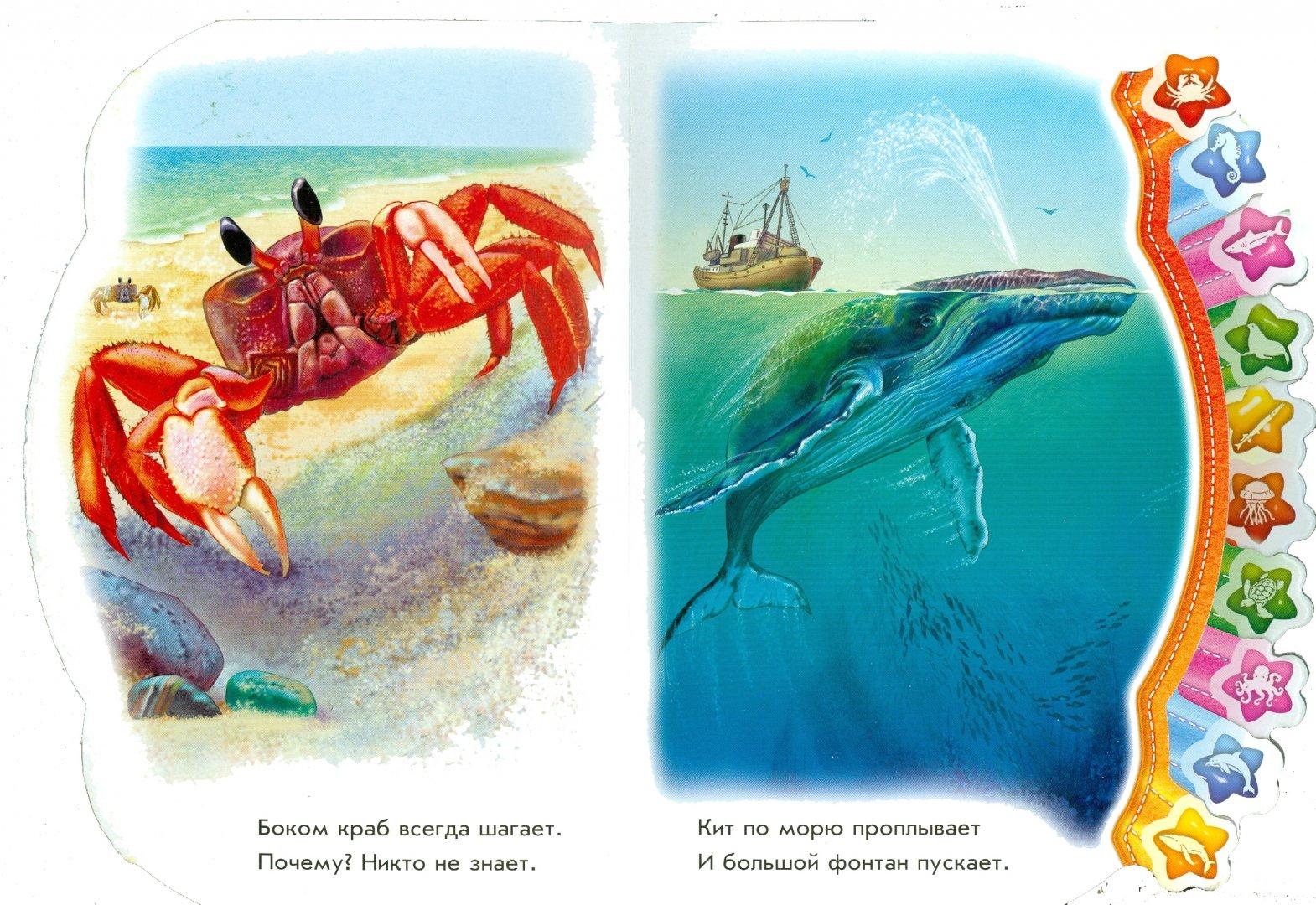 Иллюстрация 1 из 14 для В море - Олеся Квитка   Лабиринт - книги. Источник: Лабиринт
