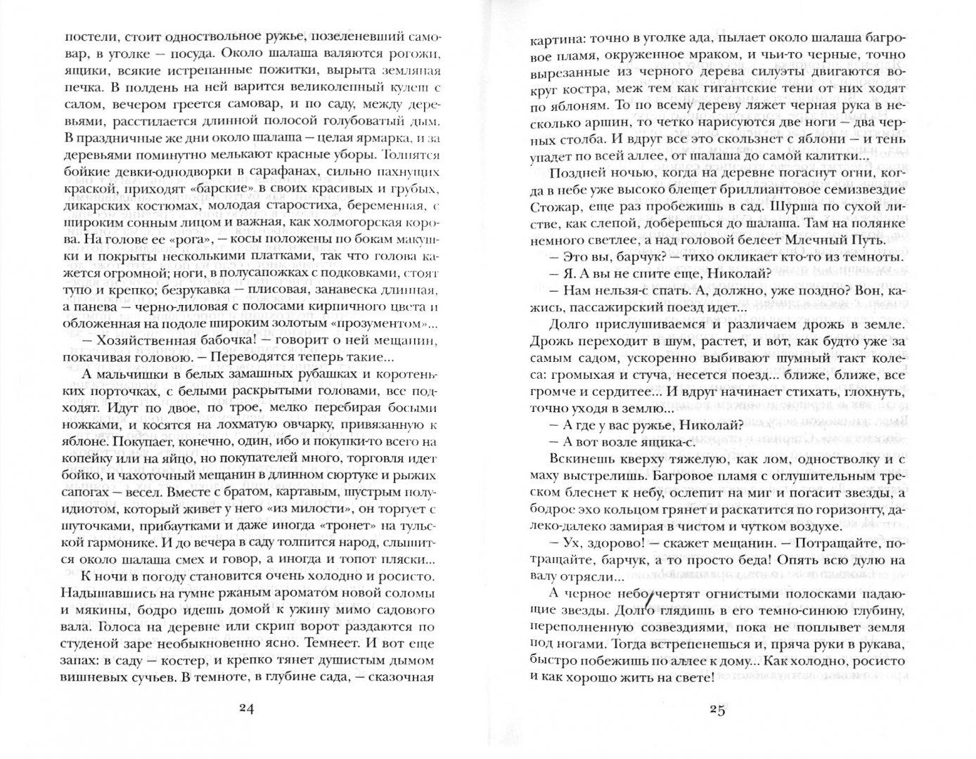 Иллюстрация 1 из 4 для Окаянные дни - Иван Бунин | Лабиринт - книги. Источник: Лабиринт