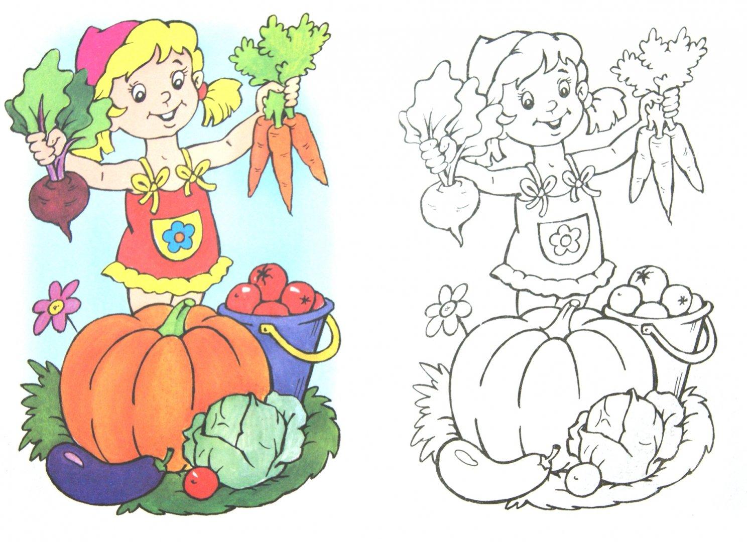 картинки раскраски на тему огород красивый