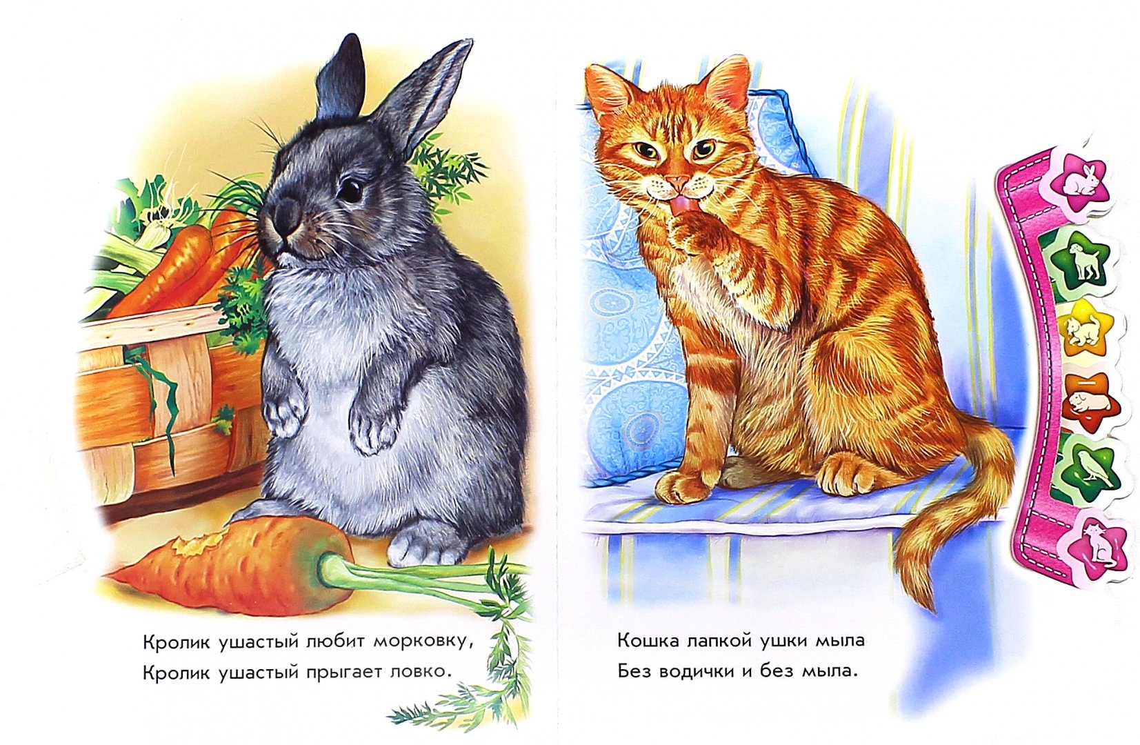 Иллюстрация 1 из 13 для В доме. Мир зверей для малышей - Олеся Квитка | Лабиринт - книги. Источник: Лабиринт