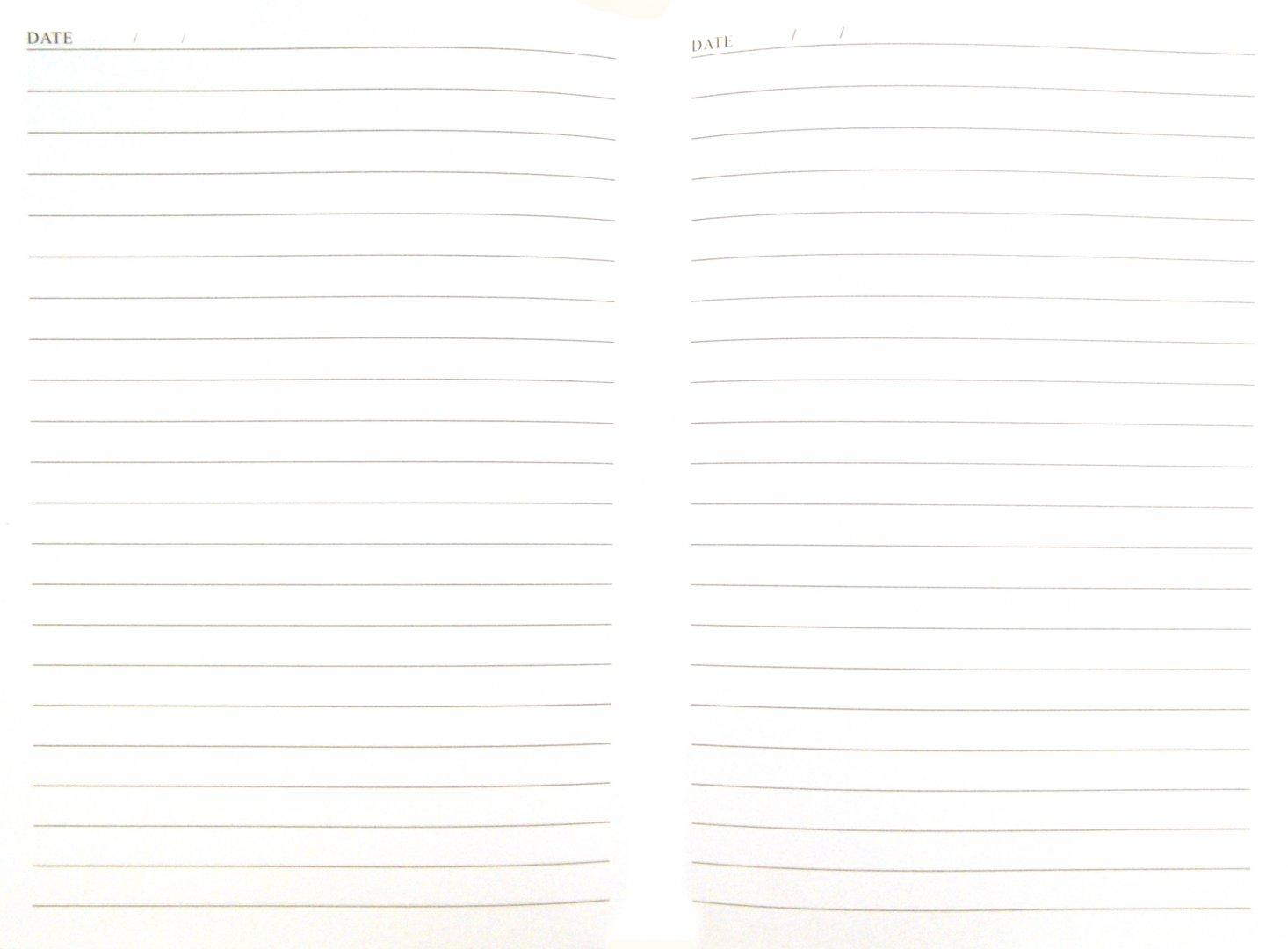 Иллюстрация 1 из 5 для Ежедневник недатированный 320 страниц, А5, синий + зеленый (22940) | Лабиринт - канцтовы. Источник: Лабиринт