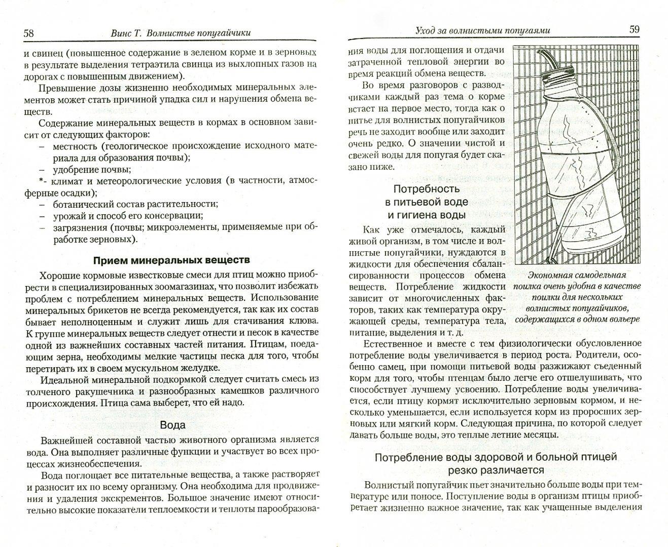 Иллюстрация 1 из 6 для Волнистые попугайчики. 89 вариаций. Содержание. Кормление. Разведение. Профилактика заболеваний - Тео Винс   Лабиринт - книги. Источник: Лабиринт