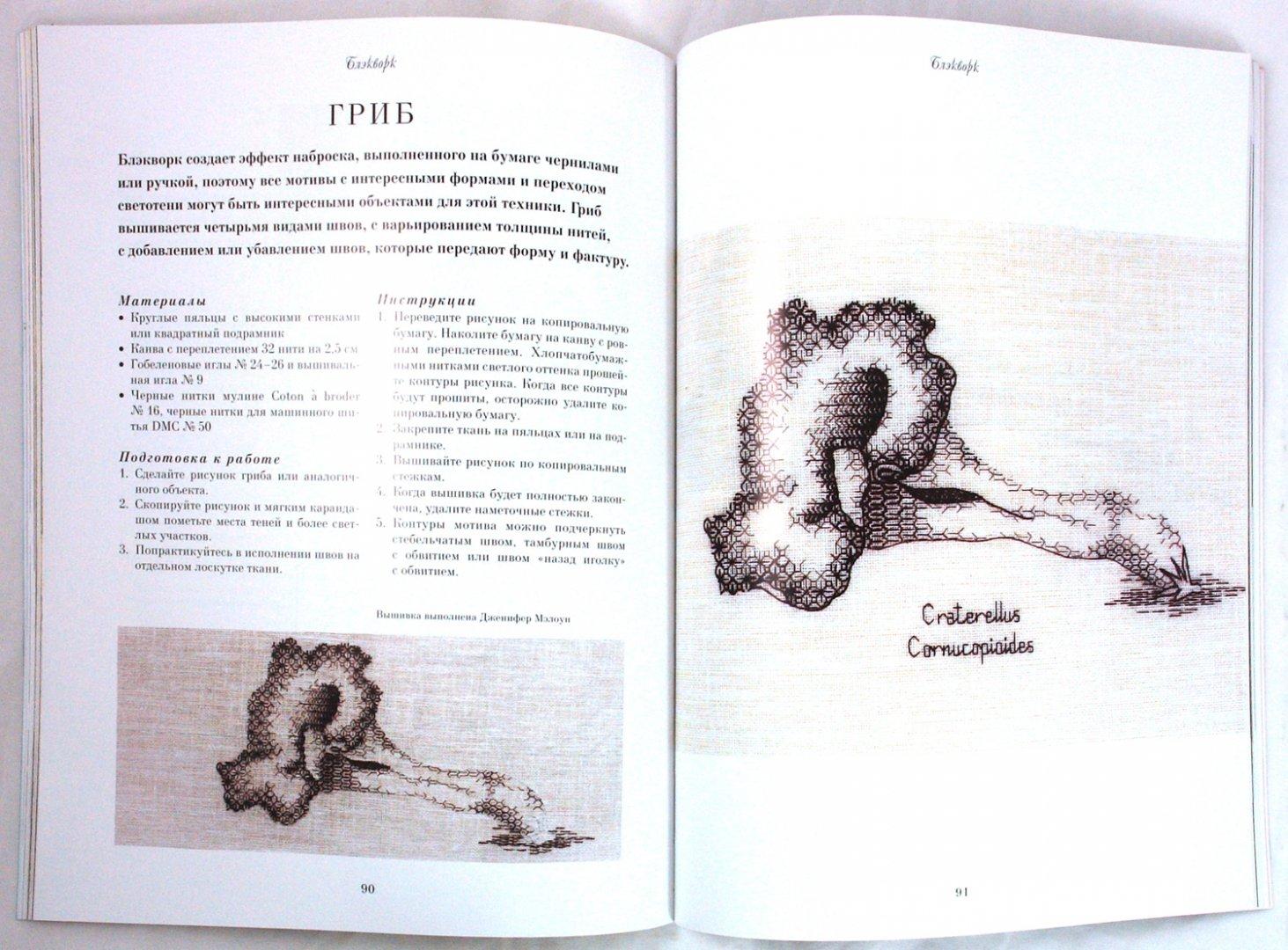 Иллюстрация 1 из 31 для Английская королевская школа вышивания - Салли Сандерс | Лабиринт - книги. Источник: Лабиринт