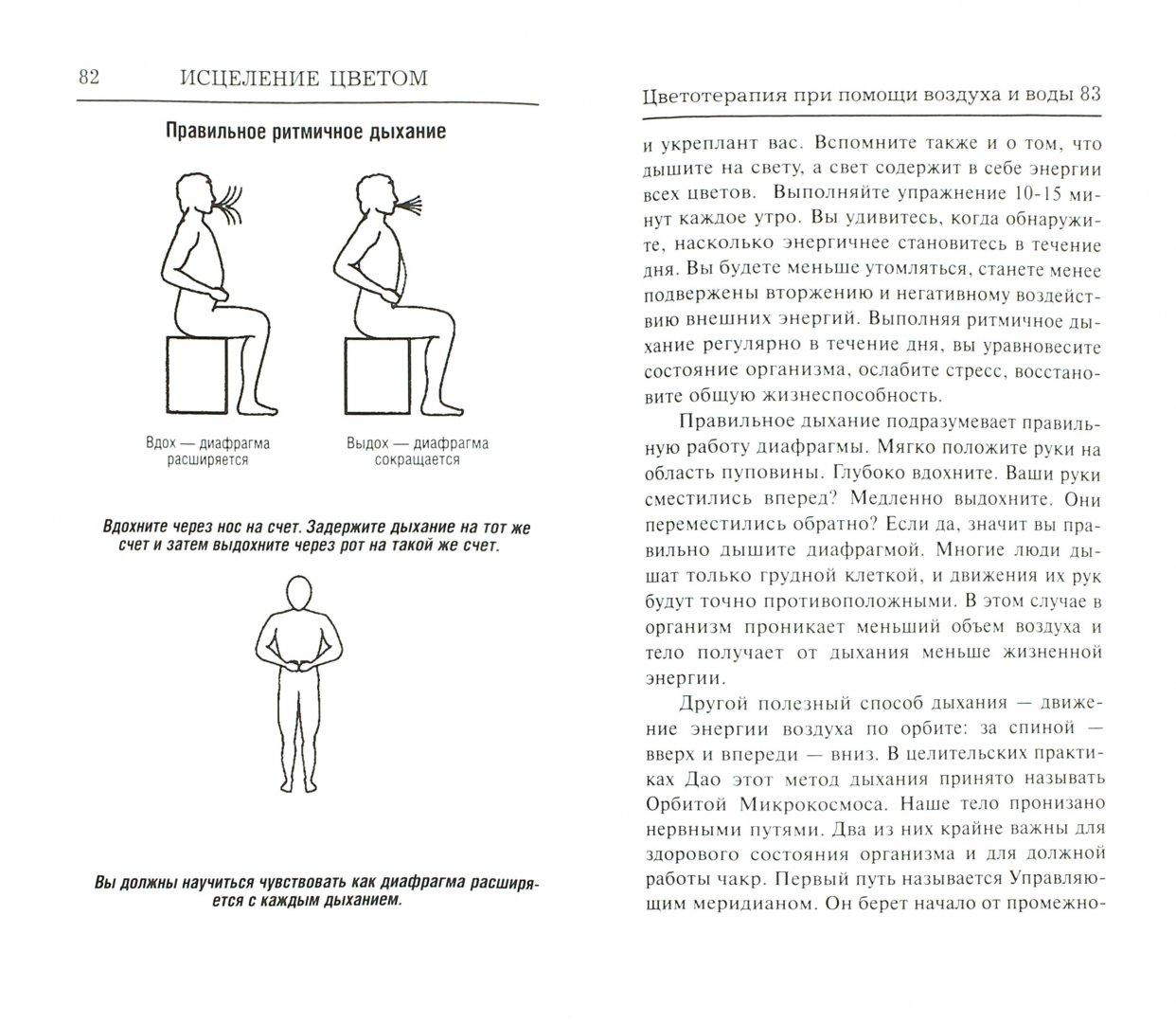 Иллюстрация 1 из 22 для Исцеление цветом - Тэд Эндрюс | Лабиринт - книги. Источник: Лабиринт