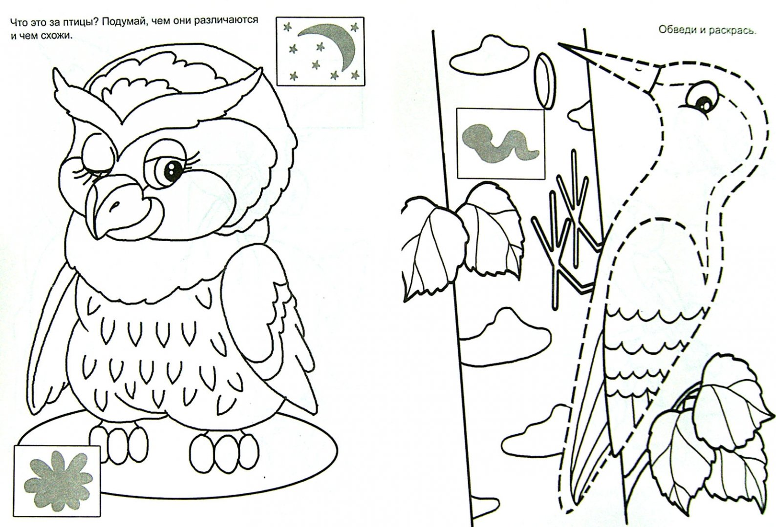 Иллюстрация 1 из 13 для Лесные малыши (раскраска с наклейками) | Лабиринт - книги. Источник: Лабиринт