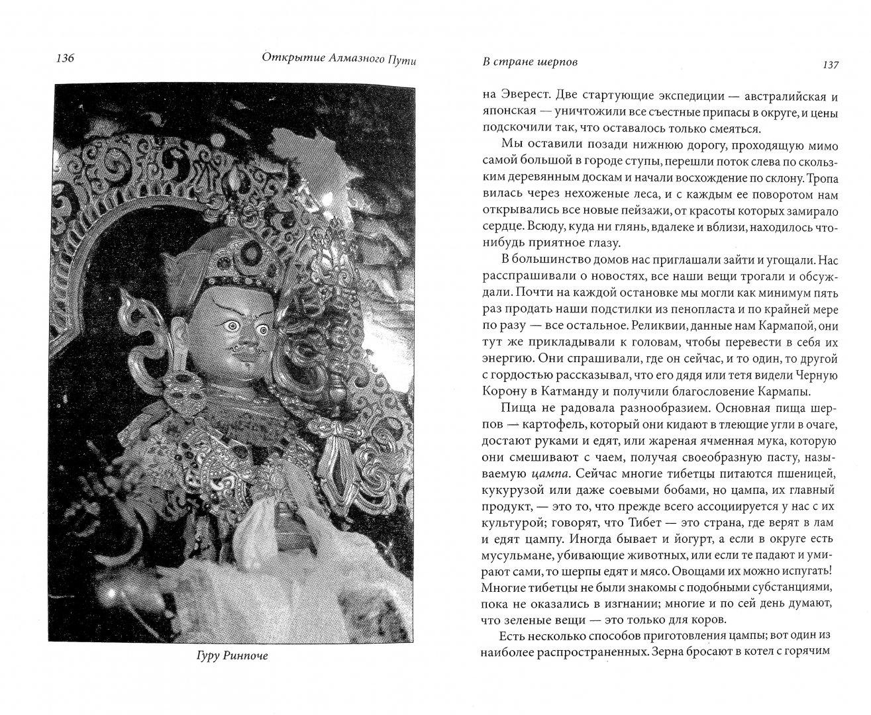 Иллюстрация 1 из 19 для Открытие Алмазного Пути: Тибетский буддизм встречается с Западом - Оле Лама   Лабиринт - книги. Источник: Лабиринт