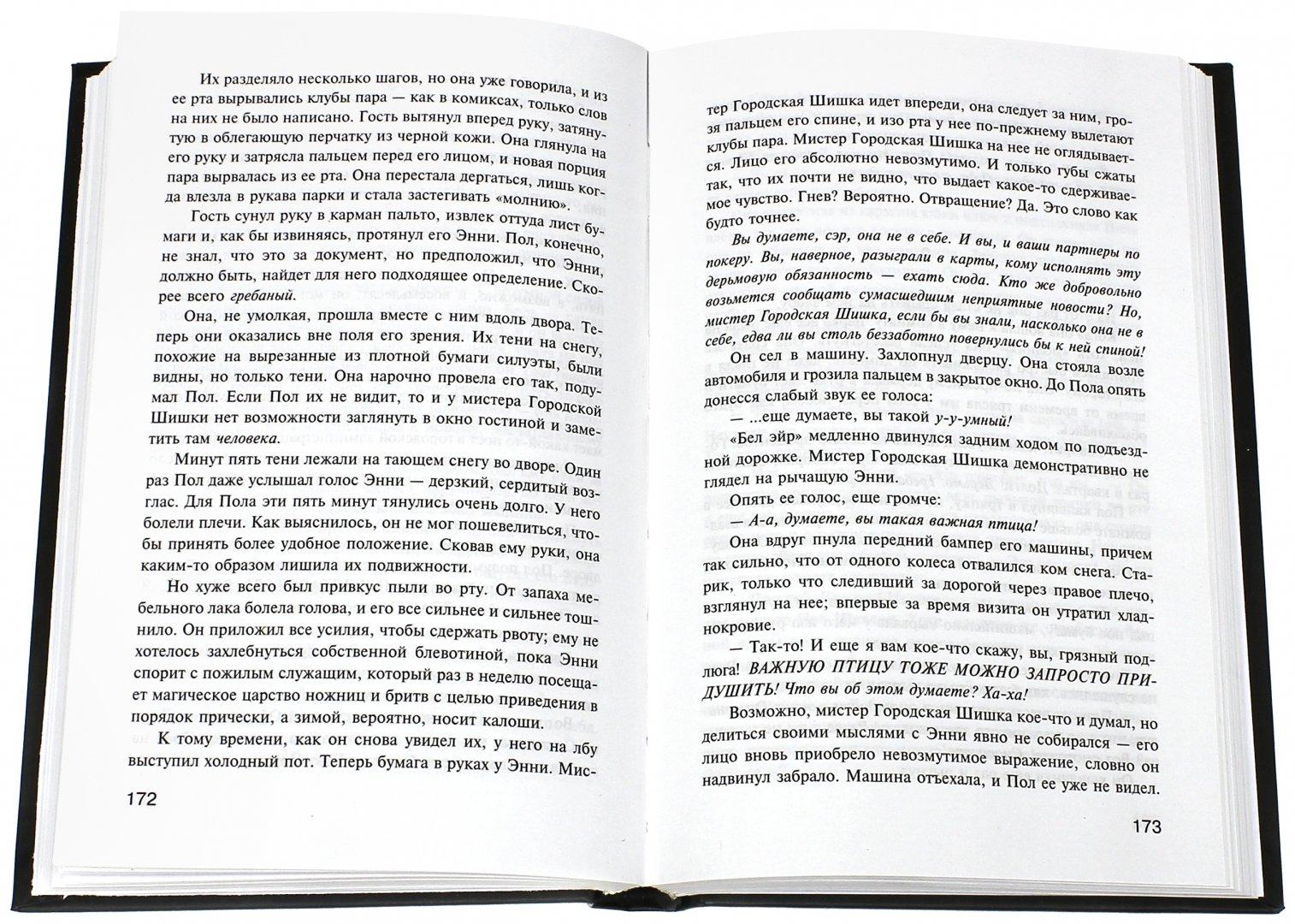 Иллюстрация 1 из 64 для Мизери - Стивен Кинг   Лабиринт - книги. Источник: Лабиринт