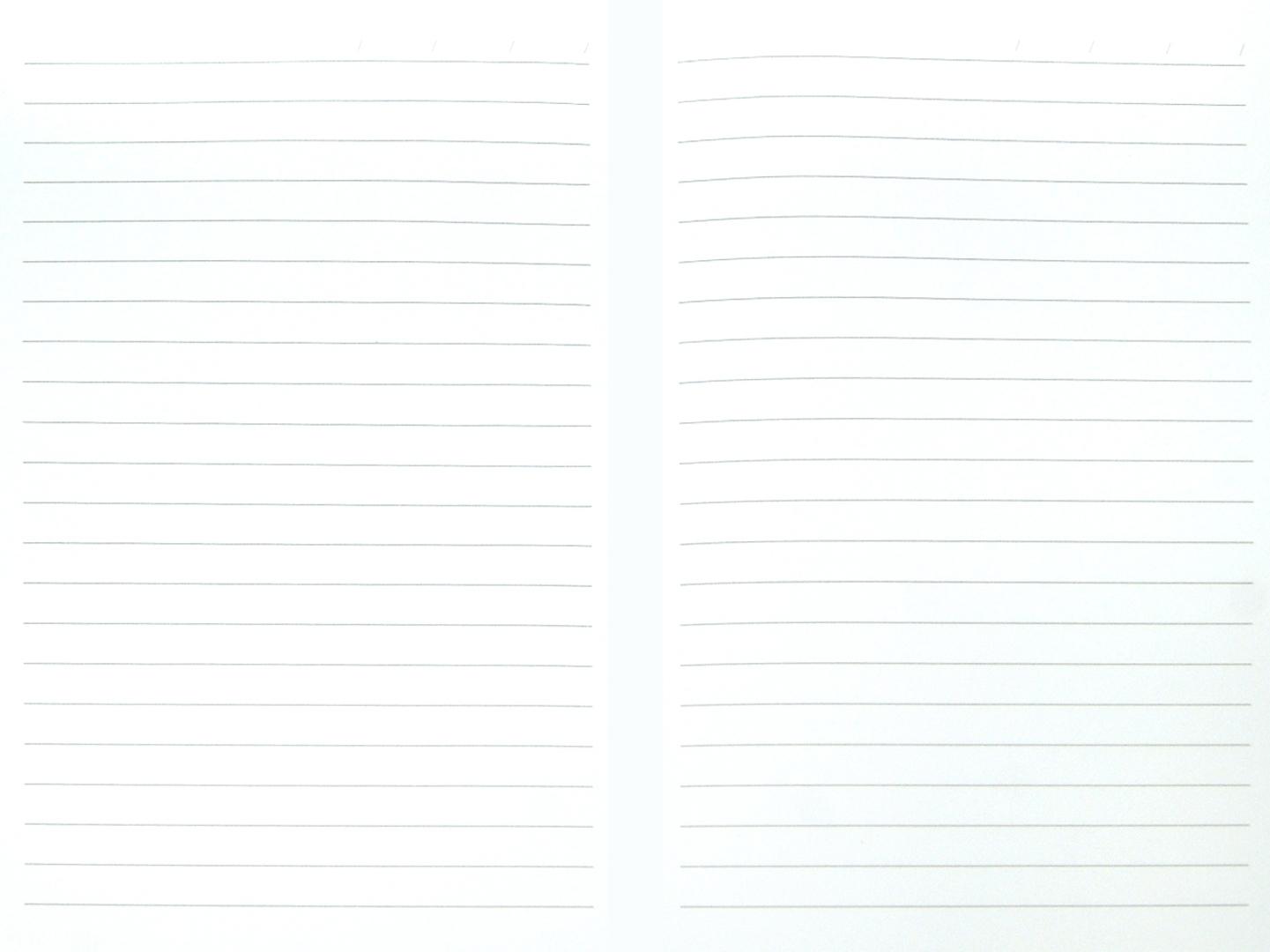 Иллюстрация 1 из 14 для Ежедневник недатированный (А5, 192 страницы, белый) (35900-18)   Лабиринт - канцтовы. Источник: Лабиринт